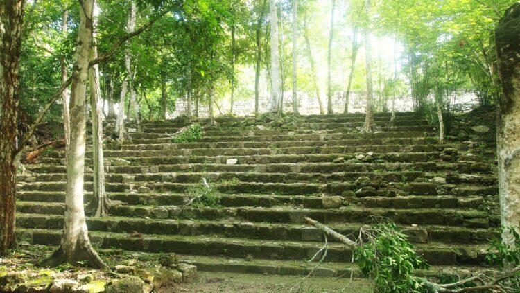 Ruines de Calakmul