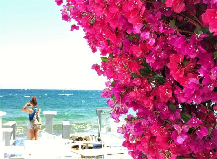 voyage en Grèce paros naousa 2
