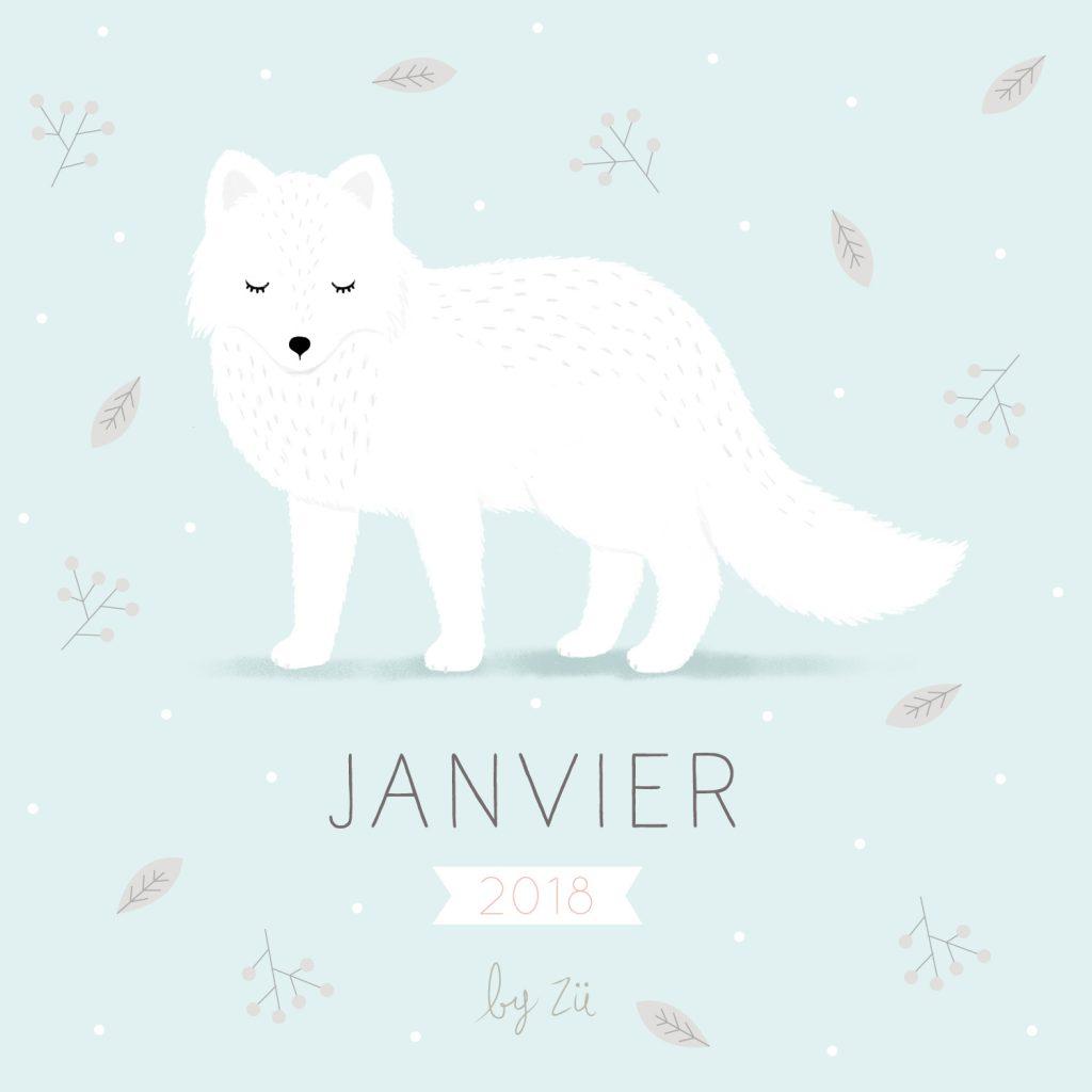 JANVIER-DIY-ZÜ-1