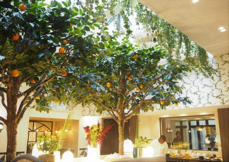 hotel royal madeleine jardin hiver