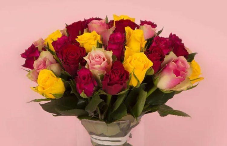 bon plan fleurs loisirs encheres