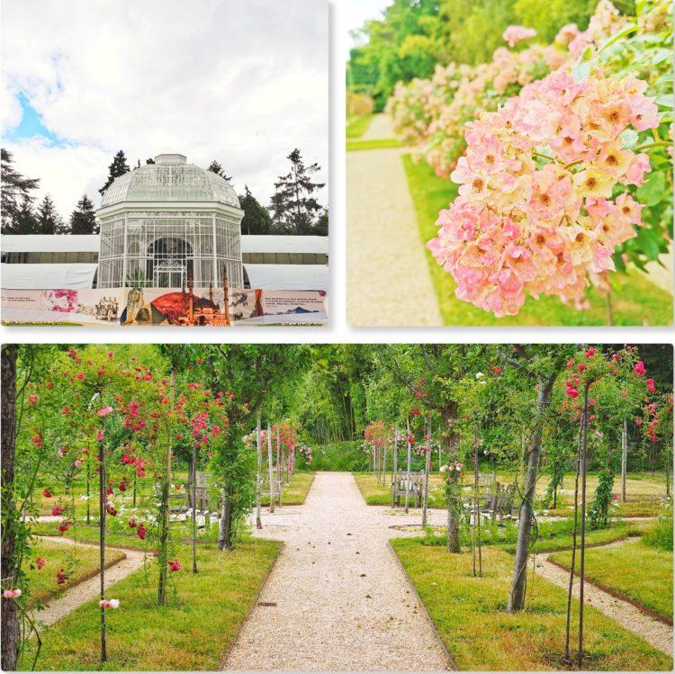 roseraie et jardin a la francaise