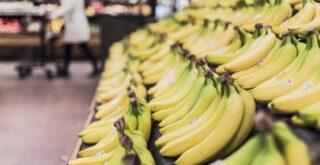 courses bio moins cheres